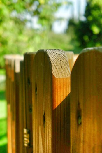 Eye On Detail Wood Gate In The Park Sunny Day Enjoying Life Relaxing Live For The Story
