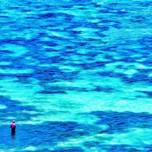 Fisherman in the Blue Ocean Lombok indonesia . 🌊☝💓🌎👍☺👉🏄😍🌞🌞🌞 asia fish hunting instagood instalike travelingtheworld teamriviera traveling travel view beach friends bali enjoy life happy fun dreamteam
