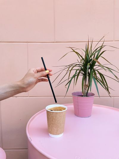 Person holding coffee cup on potted plant