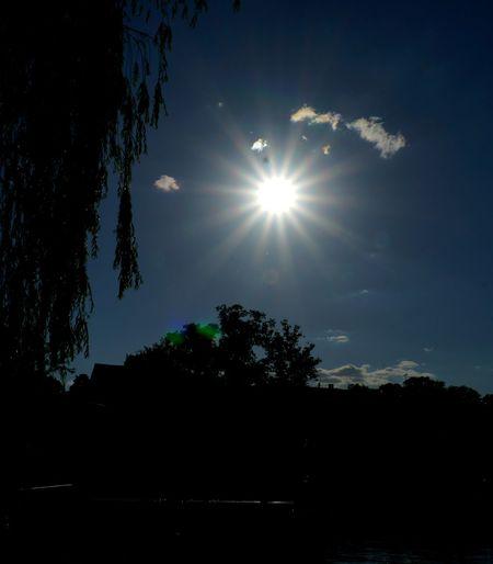 Sonnenstern