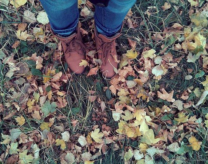 Вот теперь осень 🍂🍁 Брр холодно холоднаяосень этолетокакосень так стоп унисло человека алломамябудувхлам этонелечится ахпха Осень2015 Донецк днр парк гуляем донецкаяреспублика ветерок Листочки травка апхахах фотоног забыл октябрь2015 лойсtheend