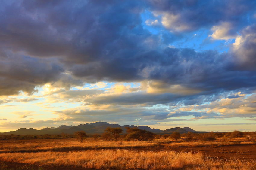 sunset in Tsavo West NP, Kenya Africa African Safari Atmosphere Atmospheric Mood Cloudscape Dramatic Sky Horizon Over Land Idyllic Landscape Mountain Range National Parks Kenya Red Soil Remote Solitude Sunset Tranquility Tsavo West Wide Open Spaces Wideness