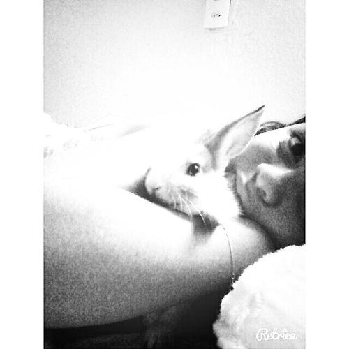 Minha princesa Lola
