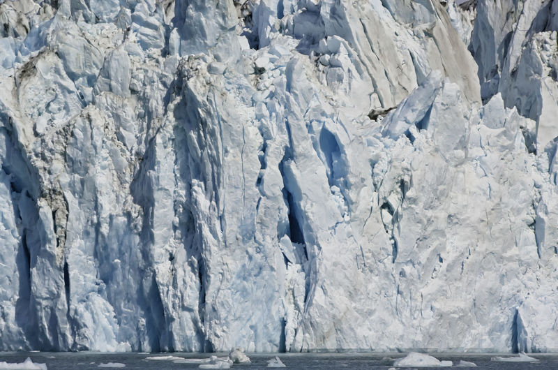 View of a glacier in the Alaskan fjords with floating ice blocks in the water. Ice wall background with blue shades. Global warming effect Alaskan American Collapse Edge Frozen Melting USA Wall Warming Alaska Chunks Climate Cold Crack Environment Fjord Floating Glacial Glacier Global Ice Iceberg Nature Ocean Snow