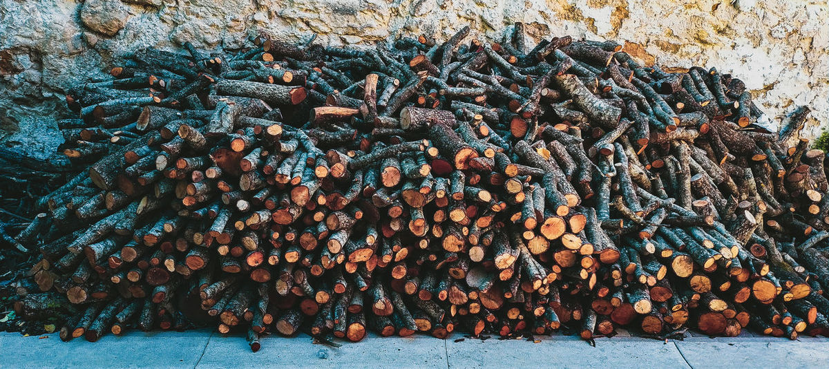 Cold is coming Fire Winter EyeEm Gallery EyeEm Nature Lover Rural Scene Rural Rurex Exploring Chimney Oven Cooking Picoftheday SPAIN Guadalajara Trunk Wood Firewood Honeycomb Close-up Deforestation Pile Woodpile Fire Pit Tree Ring Timber Bonfire Fossil Fuel Log Forestry Industry Lumber Industry