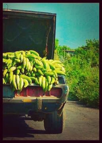 When Dominicans go shopping #TeamDominican #DominicanProblems jajajaa