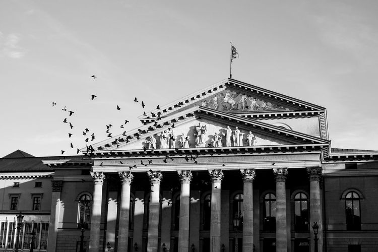 Birds flying over historic building against sky