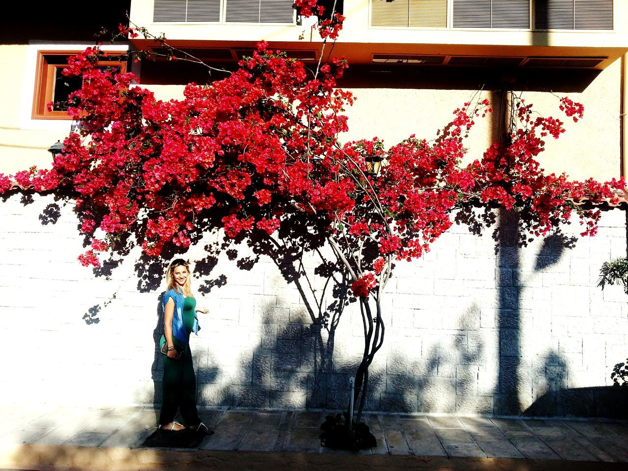 tree, growth, flower, real people, building exterior, architecture, plant, nature, one person, red, day, built structure, full length, outdoors, beauty in nature, women, freshness, people