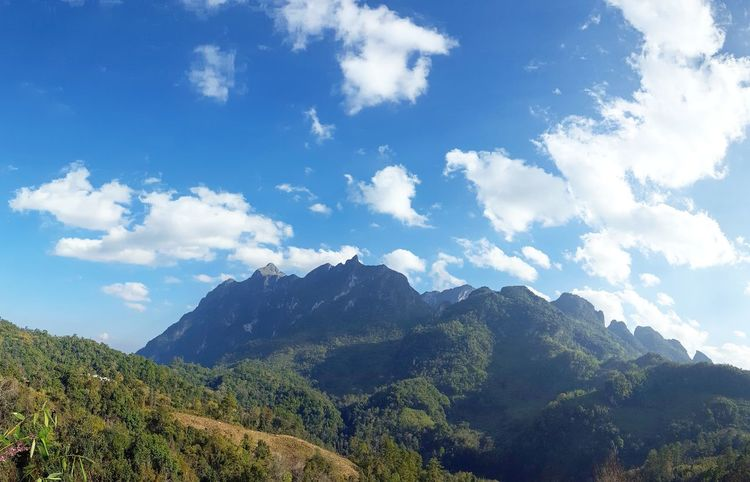Thai DoiluangChiangDao Chiang Dao Mountain Range Mountain Blue Sky Cloud - Sky Forest Pinaceae Scenics Nature Landscape Day Outdoors Mountain Peak No People Rural Scene Beauty In Nature Summer