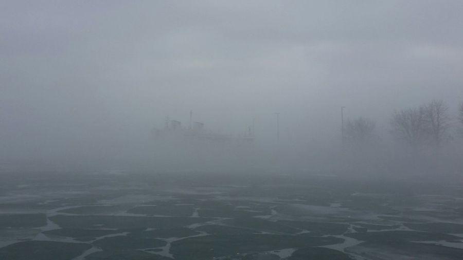 Fog No People