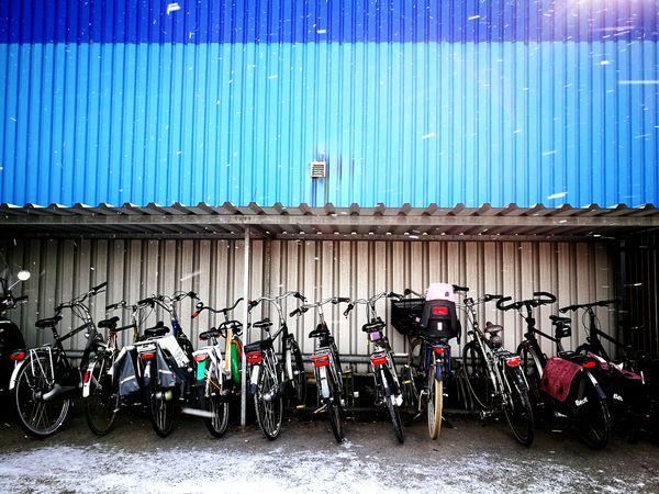 """Bike blues"" Holland Bike Country Holland Bike Netherlands Transport Fietsen Blauw Cold Cold Temperature Two Is Better Than One EyeEm Best Shots Eye4photography  EyeEm Gallery @work Bike Bikes Bleu Fietsenstalling @work Eyeemphotography Many Things More Bikes EyeEmNewHere"