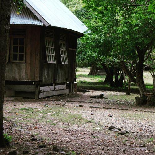 Nah itu dia... Komododragon Pulaukomodo Nusatenggaratimur INDONESIA