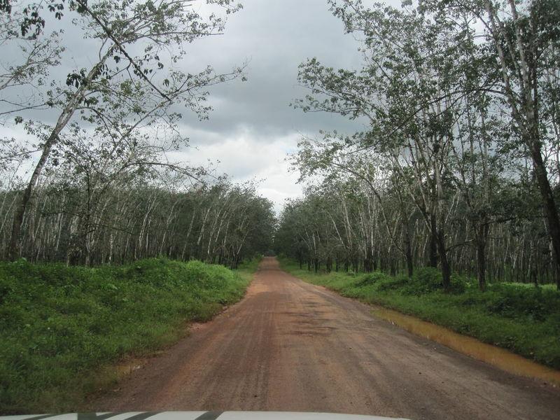 road trip Adventure Forest Jungle Landscape Liberia Muddy Roads Offroad Adventure Patroling