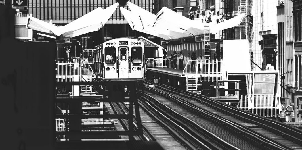CTA Chicago B&W Architecture Building Exterior Built Structure Day Large Group Of People Men Outdoors People Rail Transportation Railroad Track Real People Transportation