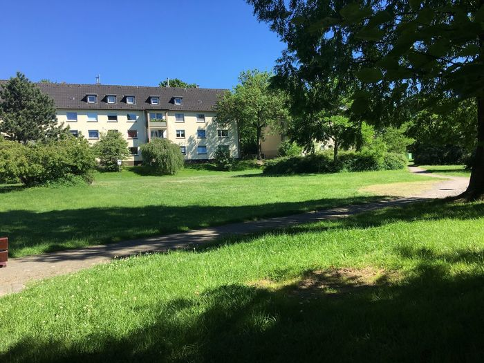 Anwohnerpark Parkbankchilling Parkbank Grün Landschaft Wiese