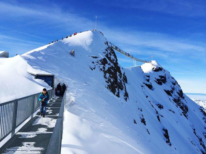 Peak Walk, Scex