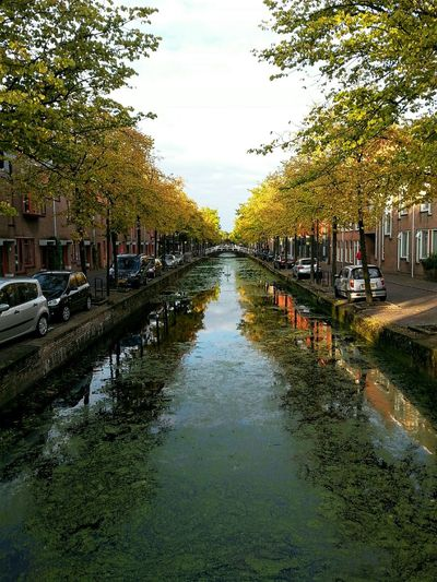 Delft Netherlands Urban Urbanphotography Sunset Summer Water Canal Water Reflections