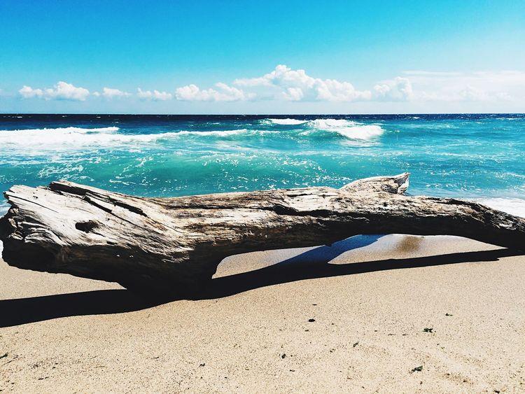 Beach Sea Horizon Over Water Sunlight Sand Sky Water Sunny Wave Beauty In Nature