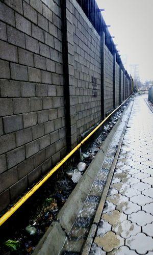 🌷 Day Brick Wall Architecture