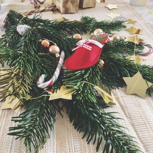 Christmas Christmas Tree Celebration Christmas Decoration Decoration Christmas Ornament Tradition Indoors