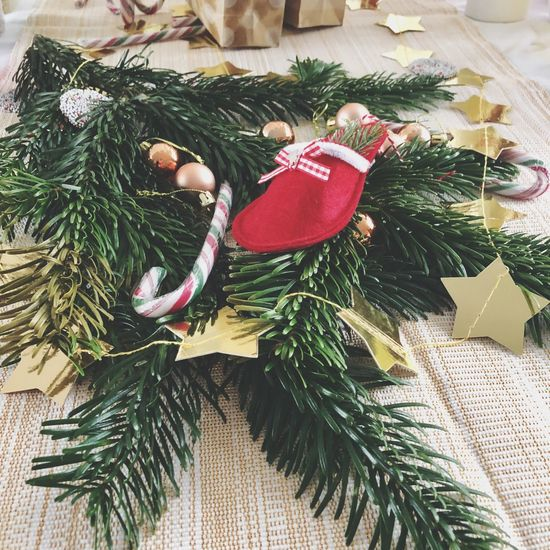 Christmas Christmas Tree Celebration Christmas Decoration Decoration Christmas Ornament Tradition Indoors