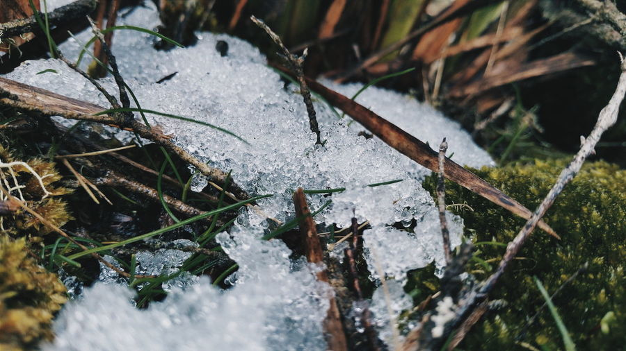 High angle view of frozen water
