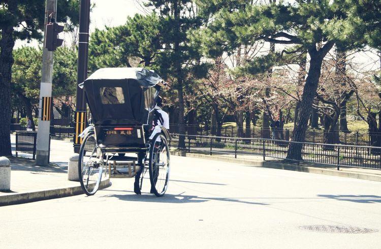 人力車 京都 Kyoto Japan Trip