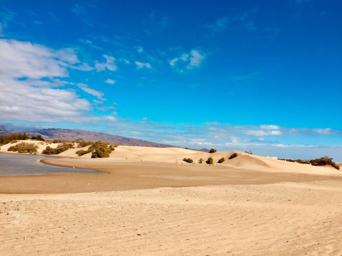 Dunes from