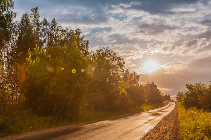 Road Sunlight, Nature, After a Thunderstorm ThunderStorm⚡ After The Storm Beauty In Nature Cloud - Sky Diminishing Perspective Nature No People Outdoors Plant Road Scenics - Nature Sky Sun Sunlight Sunset Tree