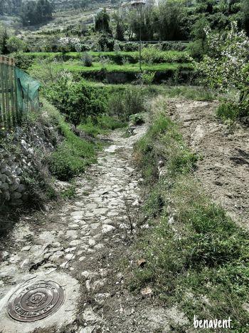 Vall De Gallinera Camins Caminos