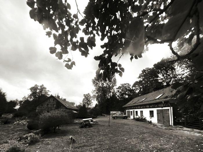 Taking Photos Countryside Country Life Monochrome Blackandwhite