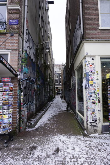 Amsterdam Graffiti Amsterdam Bloomen Amsterdamthroughmycamera Amsterdam Graffiti Amsterdamcity Amsterdam