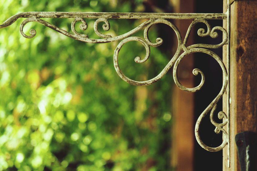 Nature EyeEm Nature Lover In My Garden ガーデニング 錆び太くん Antique 雑貨 Plants 玉ボケ部 玉ボケ Bokeh