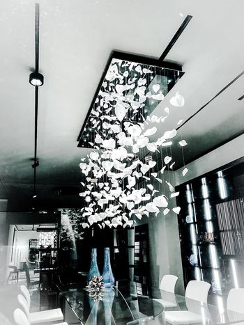 Berlin Store Window Lighting Equipment Decoration Hanging Indoors  Illuminated Ceiling Architecture Built Structure Real People Incidental People Day Chandelier Low Angle View Celebration Home Interior Pendant Light Lifestyles Light