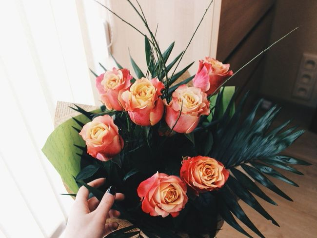 Flower Photography Love ♥ Flowers Flower Flowerporn Flower Porn Love♥ Love To Take Photos ❤ LoveFlower🌺 Love Love <3 Loveit LoveFlowers🌸 Love♡ Loveflowers Love It Loveflower Roses Rose🌹 Rose - Flower Rose♥ Roses🌹 Flowerlovers