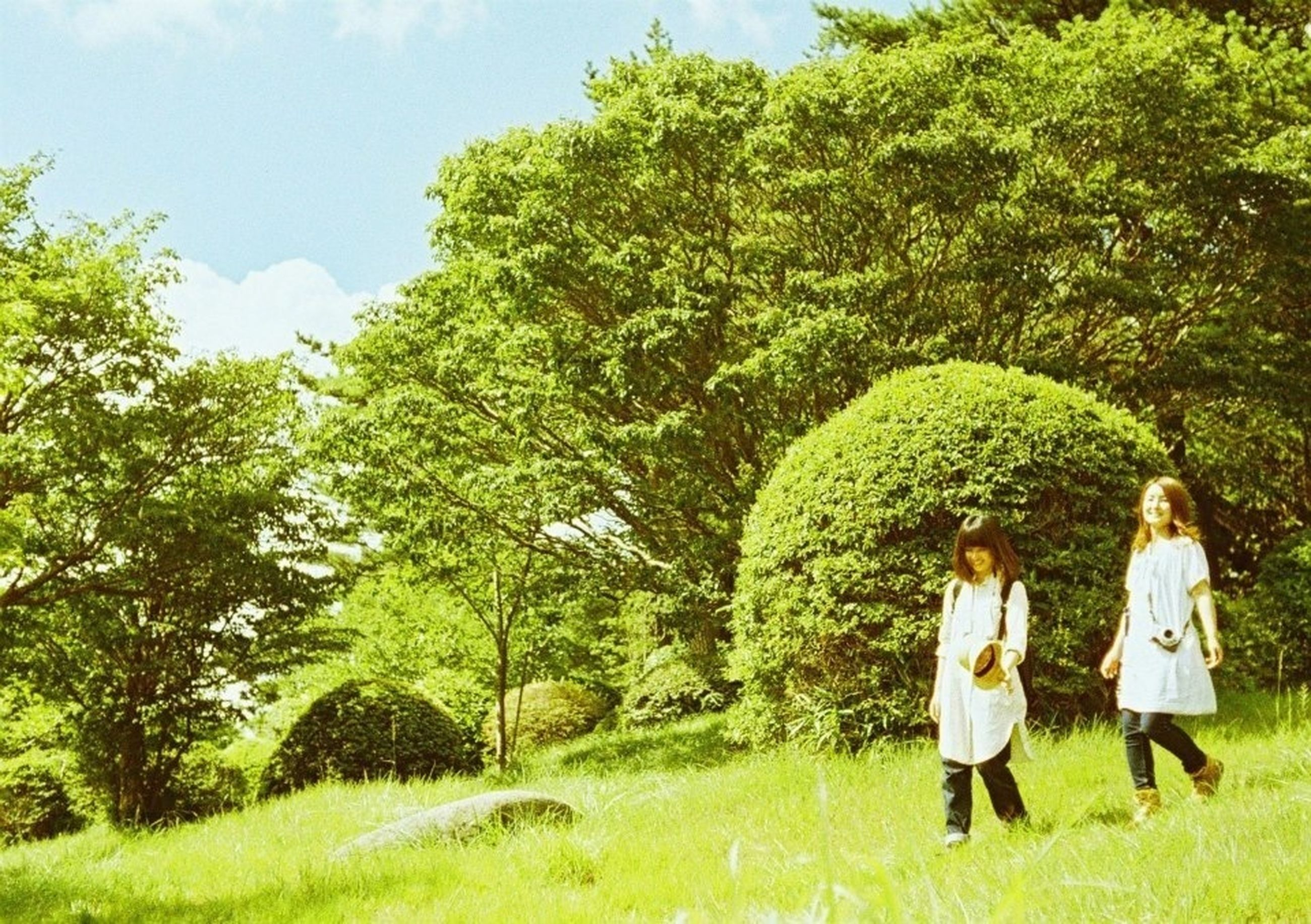 tree, grass, green color, rear view, lifestyles, growth, leisure activity, field, full length, men, standing, casual clothing, grassy, nature, person, tranquility, park - man made space, green