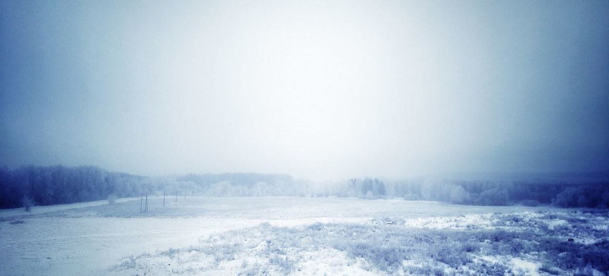 Snow Winter Cold Temperature Nature Beauty In Nature No People Snowing Landscape Day Sky зима снег