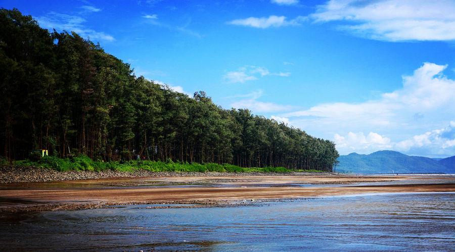 #beach #beautiful #Best #bluesky #EyeEm #greenery #landscape #landscape #nature #photography #Nature  #sand #sky #sky Heavens Holds Me #skytree