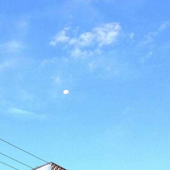 Lua  Photo