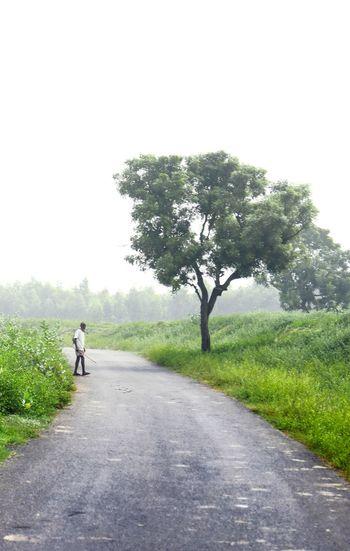 Rear view of man walking on road amidst field against sky