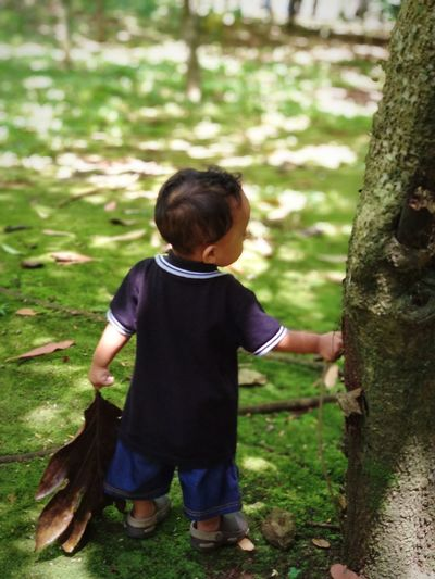 Rear view of boy standing by tree on land