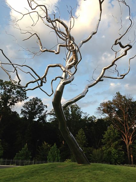 Crystal Bridges Tree Art Sculpture Art Open Edit