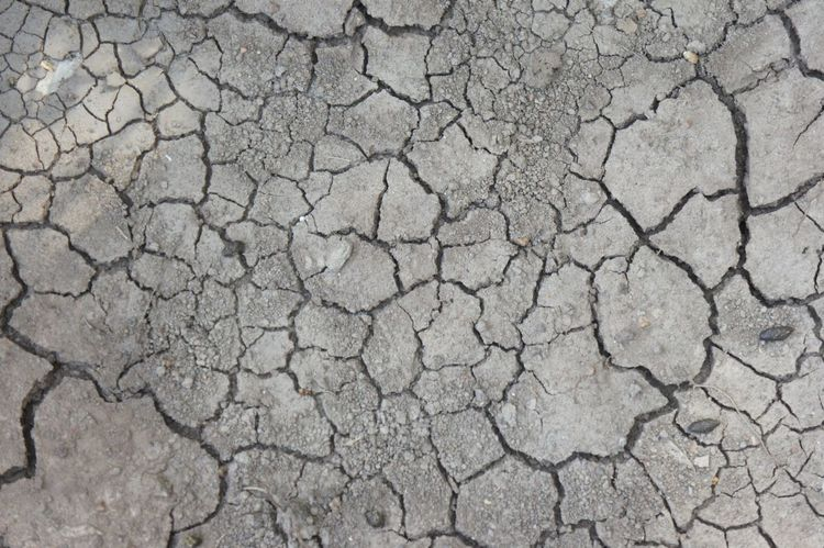 Arid Climate Backgrounds Barren Breaking Brown Close-up Cracked Desert Dirt Dividing Drought Dry Dust Environment Environmental Damage Environmental Issues Global Warming Heat - Temperature Land Mud Nature Pattern Rough Summer Textured