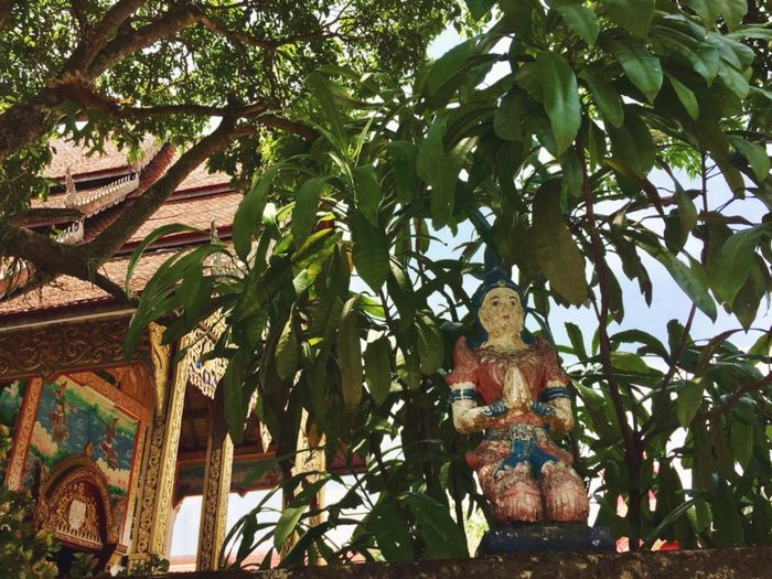 Leaf Leaves Buddhism Buddhist Temple Praying Kneeling Down Rural Scenes Thailand Travel Trip To Tailand Tree Statue Religion Place Of Worship Spirituality Branch Sculpture Architecture Green Color Built Structure Stem Decorative Art Sculpted Art