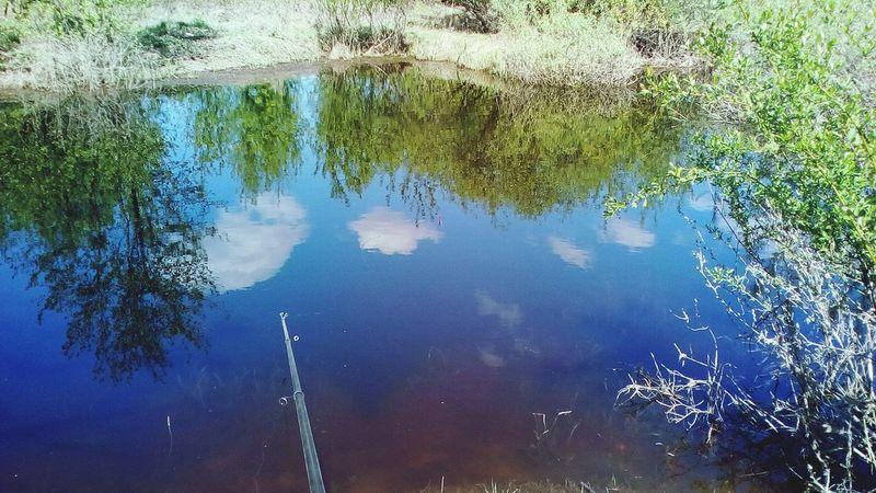 Озеро протока вода💧 природа, река, красиво Reflection Water Lake Day Outdoors No People Nature Tree Puddle First Eyeem Photo