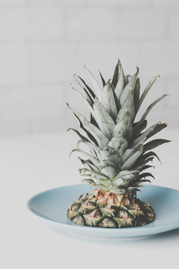Pineapple Indoors  Tropical Fruit Table No People Freshness Healthy Eating Food And Drink Close-up Still Life Leaf Food Green Color Fruit Plant Plant Part Studio Shot Focus On Foreground Wellbeing White Background