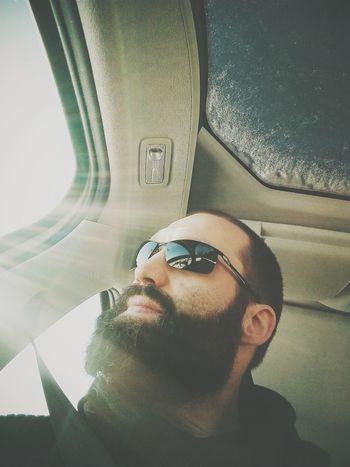 Winter Sun The New Self-Portrait Beard