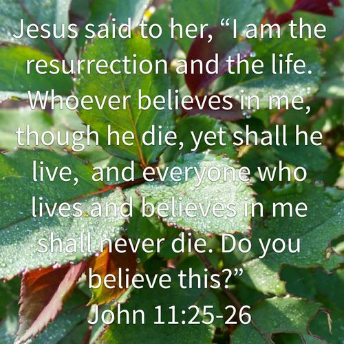 Resurrection And The Life Do You Believe This? TRUE LOVE ❤ Glory, Honour And Praise!