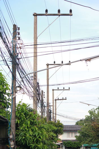 Poles and power lines Poles And Power Lines Architecture Bridge - Man Made Structure Building Exterior Built Structure Cable City Connection Day Electricity  Electricity Pylon Low Angle View Nature No People Outdoors Power Line  Sky Tree