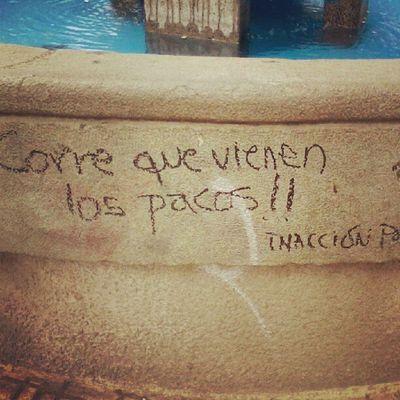 Inaccion poetica en la pileta de la plaza jajajaja Corre Inaccion Poetica Plaza pileta